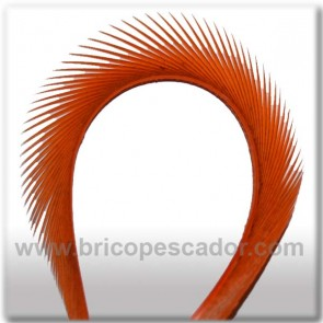 Goose Biot Stripped color naranja
